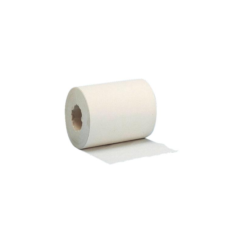 Putzpapier