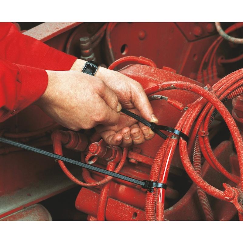 Kabelbinder Standard mit Kunststoffzungenverschluss - KBLBA-KST-KSTZNG-SCHWARZ-7,8X540