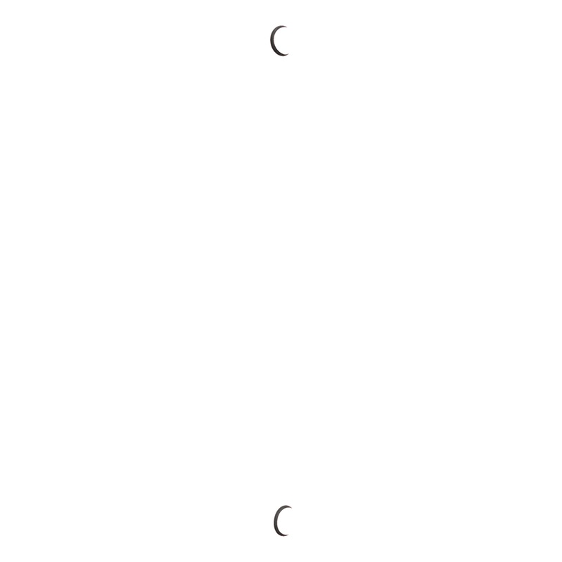 Fenstermontageschiene W-ABZ - 0