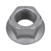 Nut for frame screw