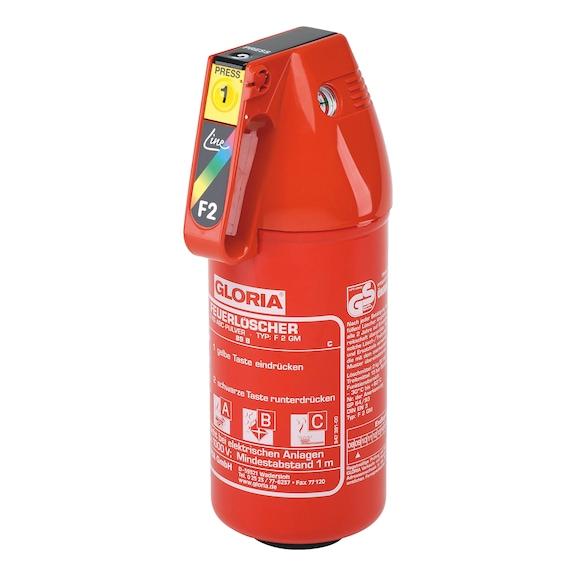 Feuerlöscher P2GM 2 kg