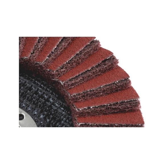 Segmentovaný brúsny kotúč OSF<SUP>®</SUP> - 2