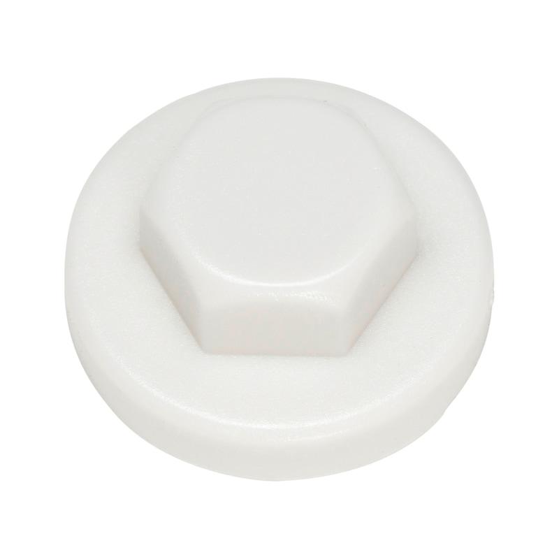 Zaślepka z tworzywa sztucznego do łba soczewkowego - ZAŚLEPKA-SW3/8-R9002-SZAROBIAŁA-D16/19