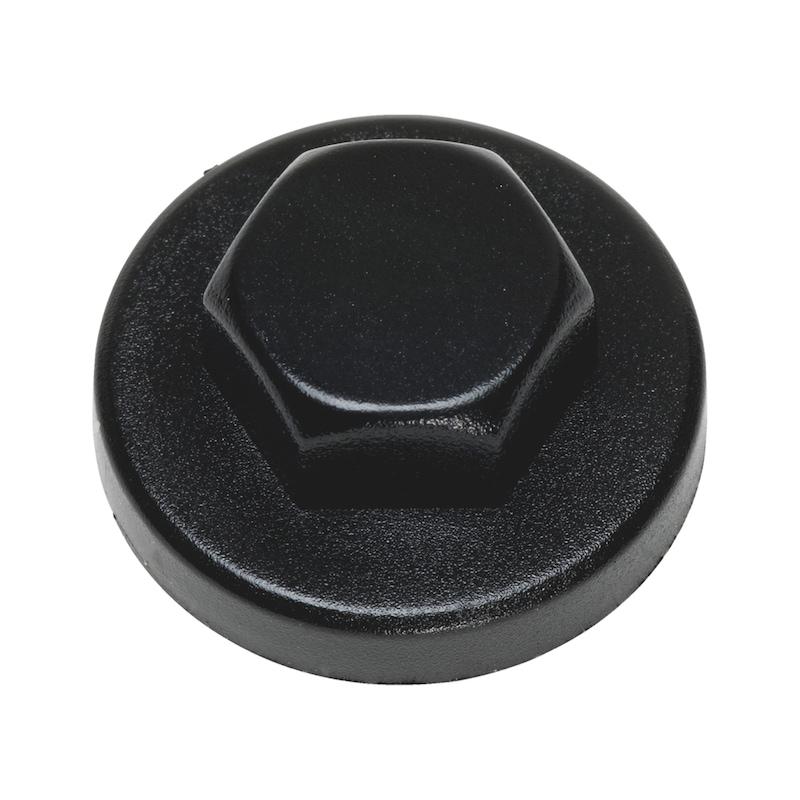 Zaślepka z tworzywa sztucznego do łba soczewkowego - ZAŚLEPKA-SW3/8-R9005-TFSCHWARZ-D16/19