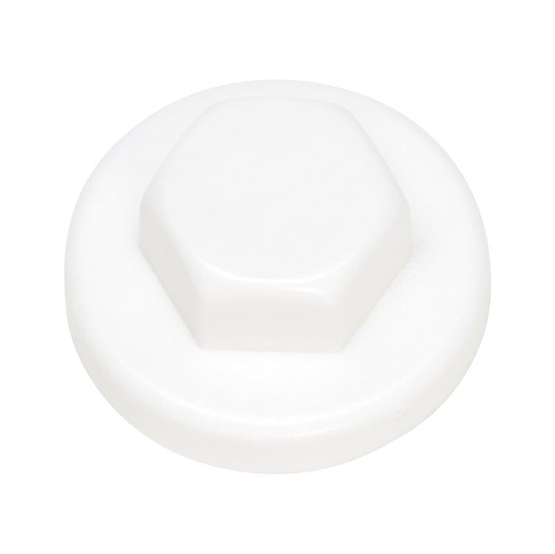 Zaślepka z tworzywa sztucznego do łba soczewkowego - ZAŚLEPKA-SW3/8-R9010-REINWEISS-D16/19
