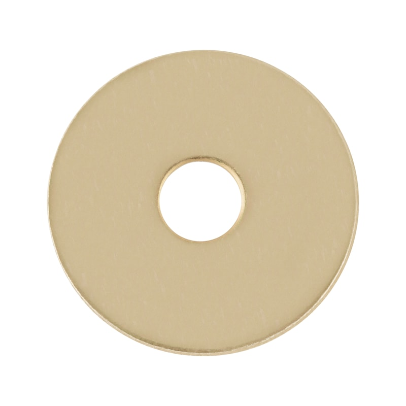 Rondella grembialina - 1