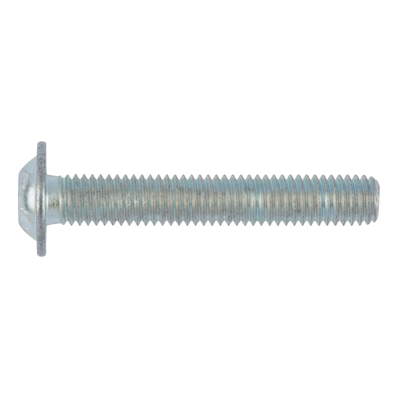 Screw with flattened half round head with collar and hexagon socket - 1
