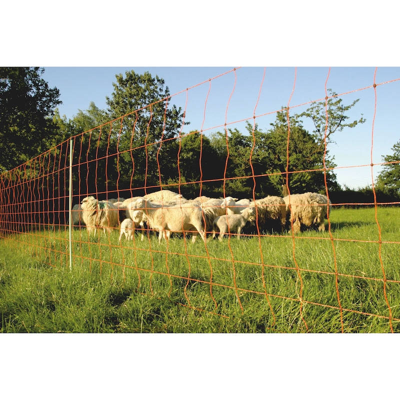 Euro-Netz Kombi - AGRI-EURONETZ-KOMBI-90CMX50M-1PFAHL/5M