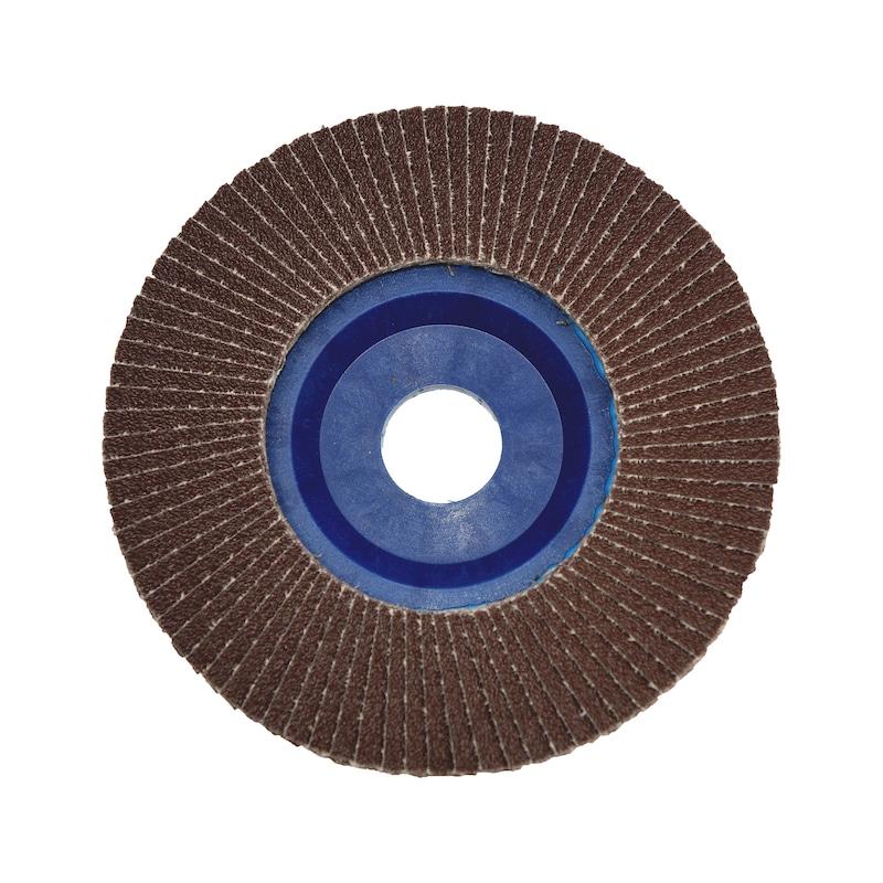 Disque à lamelles AlOx plateau plastique - 3