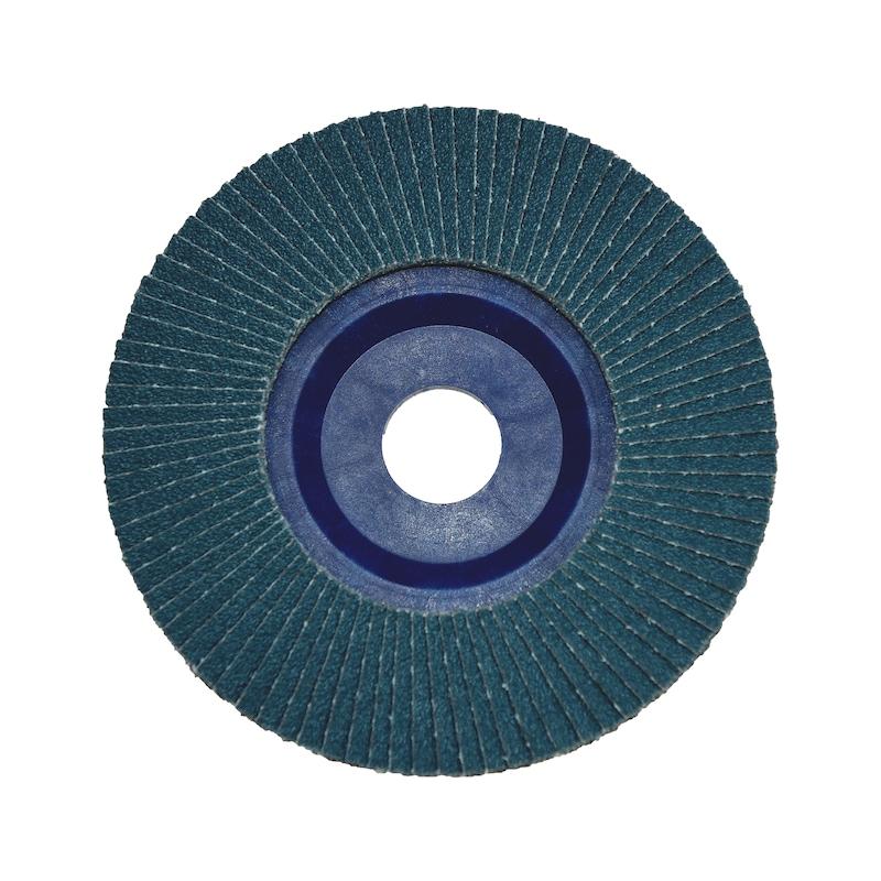 Disque à lamelles zirconium plateau plastique - 3