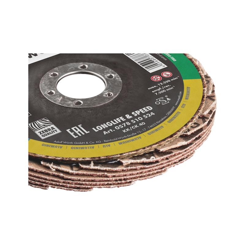 Buy Segmented grinding disc CERALINE Longlife & Speed
