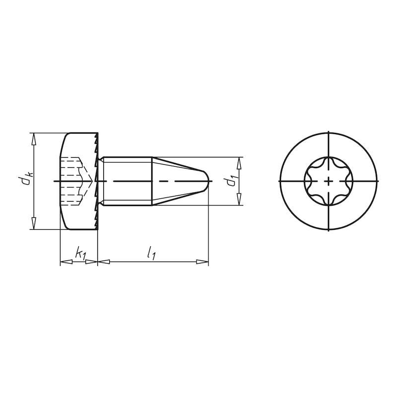 GEFU<SUP>®</SUP> Gewindefurchende Schraube mit Flachkopf mit Unterkopfverzahnung und Innensechsrund (TXplus) - 2