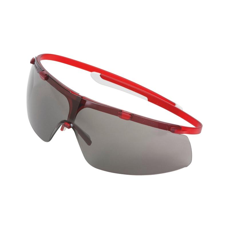 Schutzbrille LIBRA<SUP>®</SUP> - BGLBRIL-LIBRA-GRAU
