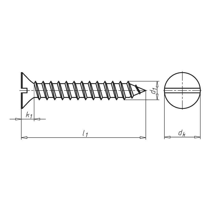Senk-Blechschraube Form C mit Schlitz - 2