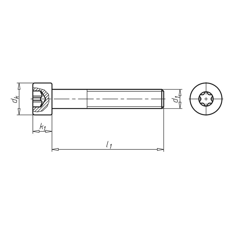 Zylinderschraube mit Innensechsrund - SHR-ZYL-ISO14579-8.8-TX30-(A2K)-M6X25