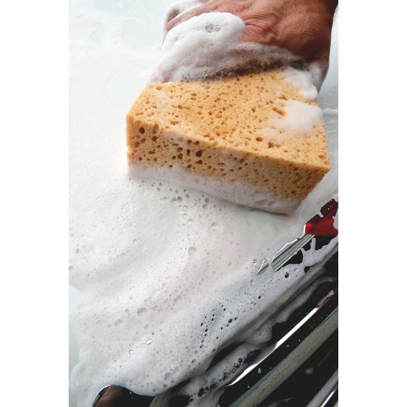 Ultra Foam Wash - 2
