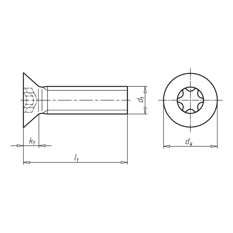 Senkschraube mit Innensechsrund - SHR-SEKPF-ISO14581-08.8-TX50-M10X70