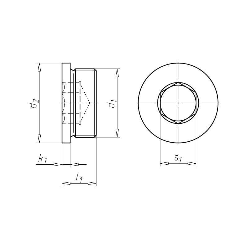 Уплотнительная пробка с внутренним шестигранником и буртиком, дюймовая - ЗАГЛУШКА-DIN908-IS10-G1/2A
