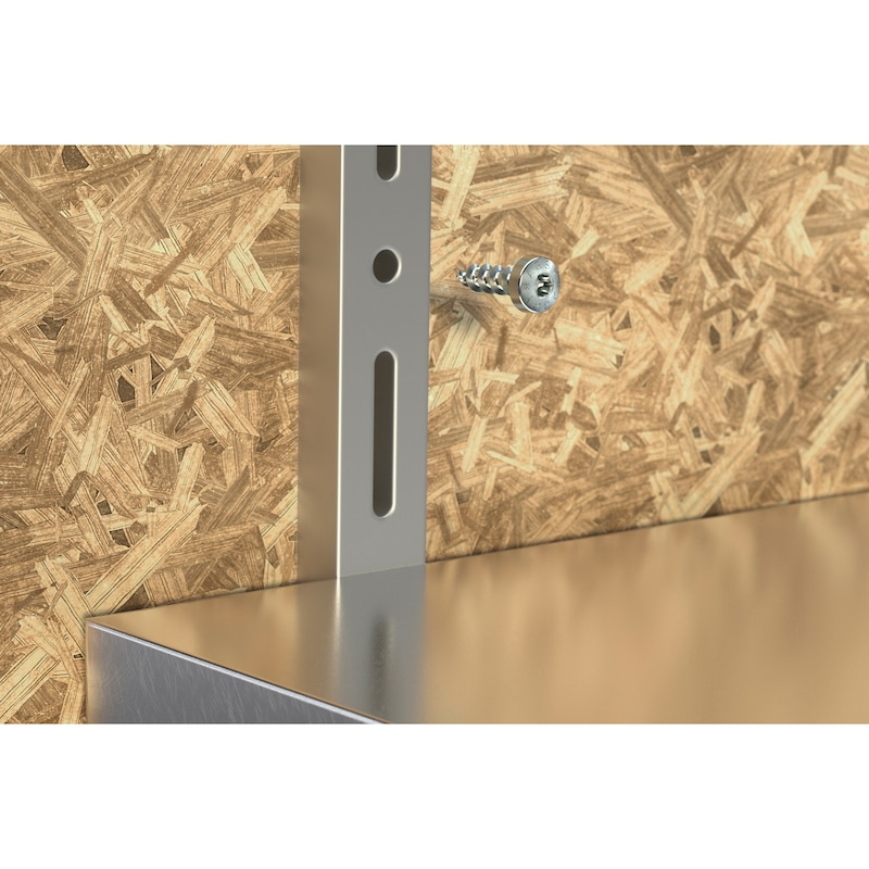ASSY<SUP>®</SUP> 4 PH skrue til fittings Forzinket stål, fuldgevind, panhoved - 10