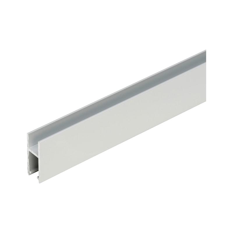 Laufschuh-Schiene - 1