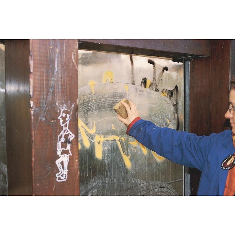 Rimuovi graffiti Graffiti-EX, per esterni - 2