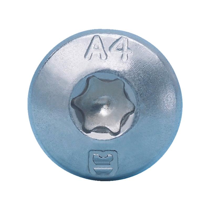 Linsen-Blechschraube Form C mit AW-Antrieb und Gleitbeschichtung - 3