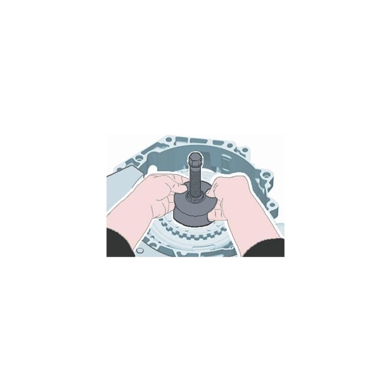 Buy DSG coupling tool set, 13 pieces online | WÜRTH
