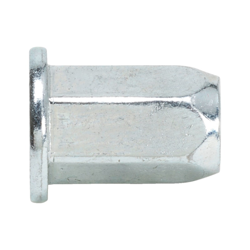 Rivet nut with flat head and hexagon shank - 1