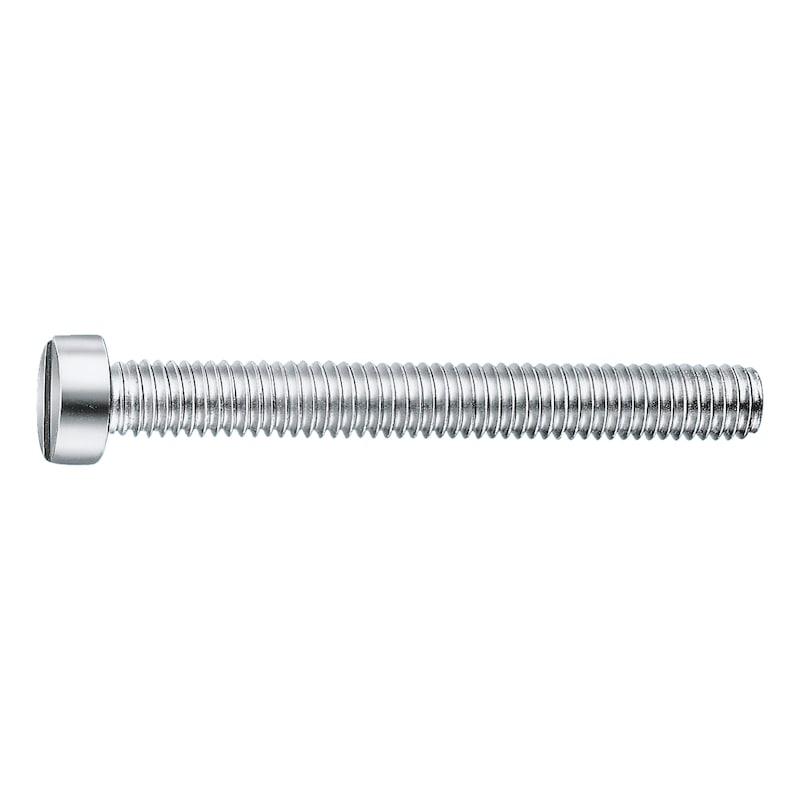 Zylinderschraube mit Schlitz - 1
