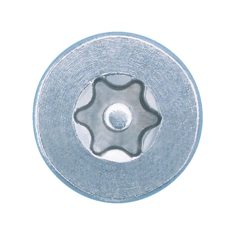 Sicherheitsschraube mit Innensechsrund u. Pin - 3