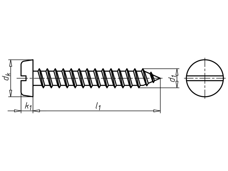 cylinder tapping screw  shape c with slot