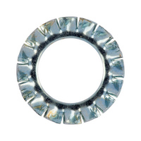 Serrated lock washer, externally serrated, shape A