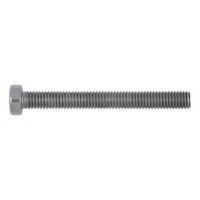 Cheese head screw with hexagon socket and low head
