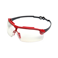 SIRIUS<SUP>®</SUP> safety goggles