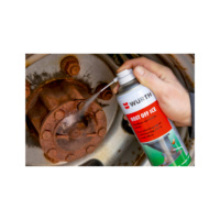 Rust remover Rost-Off Ice