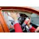 Cola em spray forte Plus - COLA DE CONTACTO EM SPRAY FORTE - 2