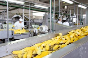 Lebensmittelindustrie Schmierstoffe