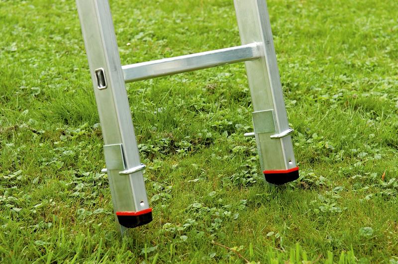 Leiter auf Rasen